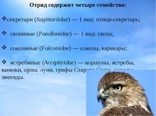 Отряд содержит четыре семейства: секретари(Sagittariidae)— 1 вид:птица-сек