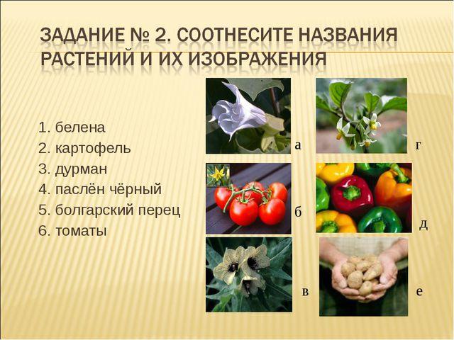 1. белена 2. картофель 3. дурман 4. паслён чёрный 5. болгарский перец 6. тома...
