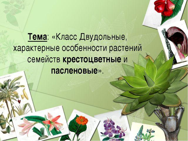 Тема: «Класс Двудольные, характерные особенности растений семейств крестоцвет...