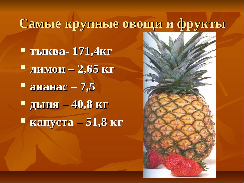 Самые крупные овощи и фрукты тыква- 171,4кг лимон – 2,65 кг ананас – 7,5 дыня...