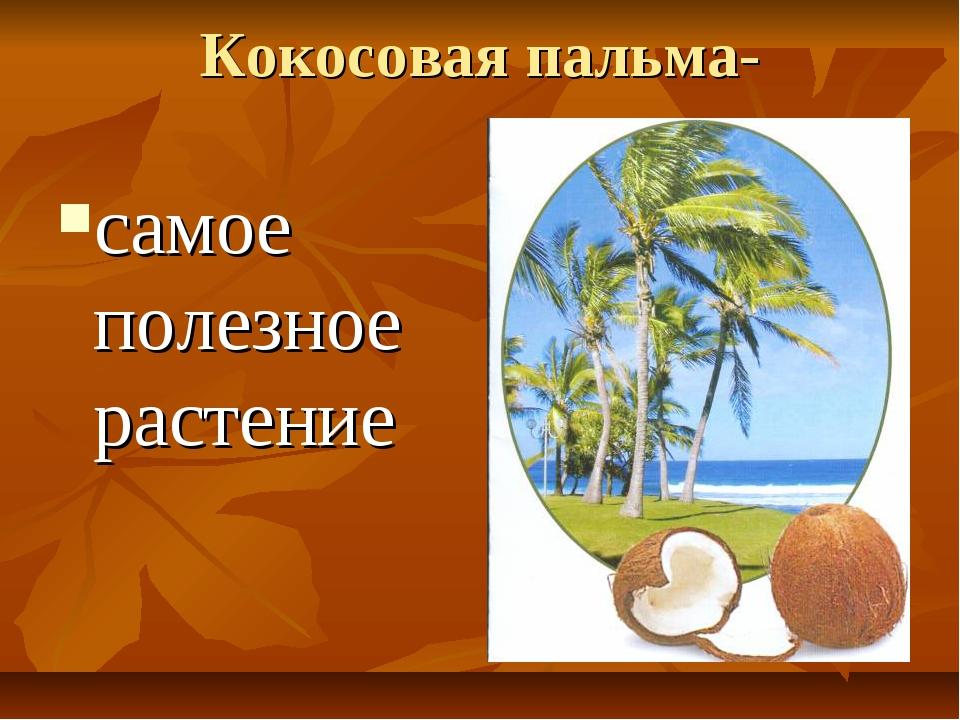 Кокосовая пальма- самое полезное растение