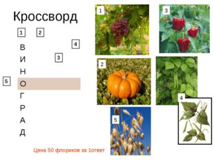 Кроссворд 1 2 3 4 1 2 3 5 5 4 Цена 50 флориков за 1ответ В И Н О