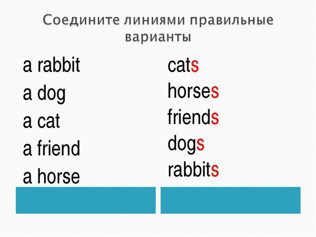 a rabbit a dog a cat a friend a horse cats horses friends dogs rabbits