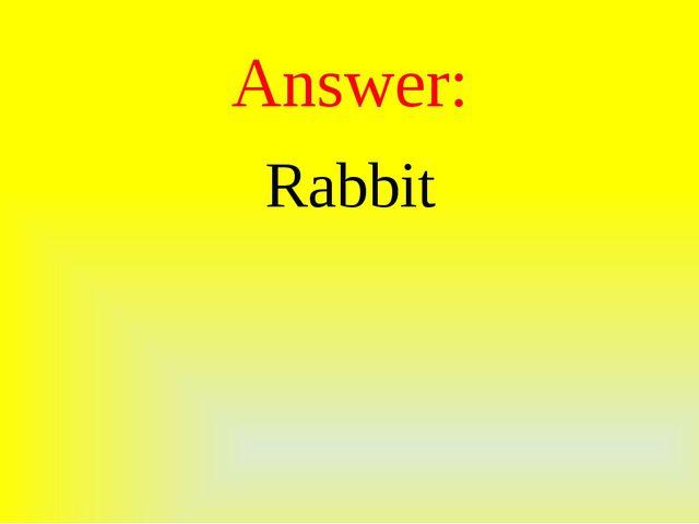 Answer: Rabbit