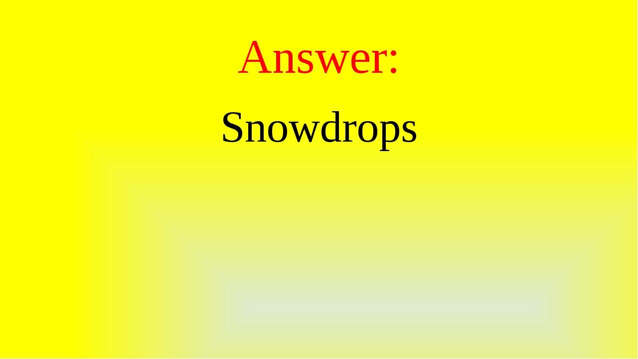 Answer: Snowdrops