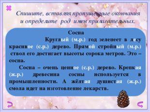 Сосна   Круглый (м.р.) год зеленеет в лесу красивое (с.р.) дерево. Прямой