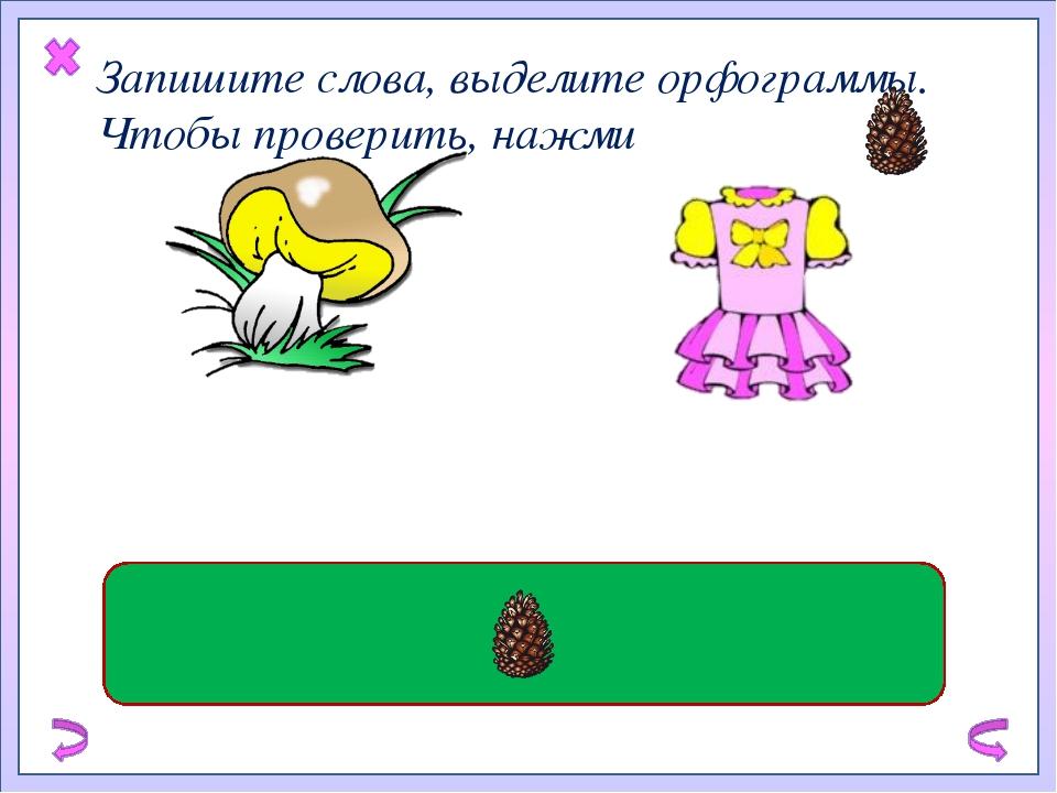 Запишите слова, выделите орфограммы. Чтобы проверить, нажми съедобный гриб ш...