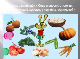 Кролик раз пришёл к Сове и спросил, поохав: «Что нам кушать хорошо, а чем пит