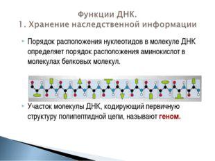 Порядок расположения нуклеотидов в молекуле ДНК определяет порядок расположен