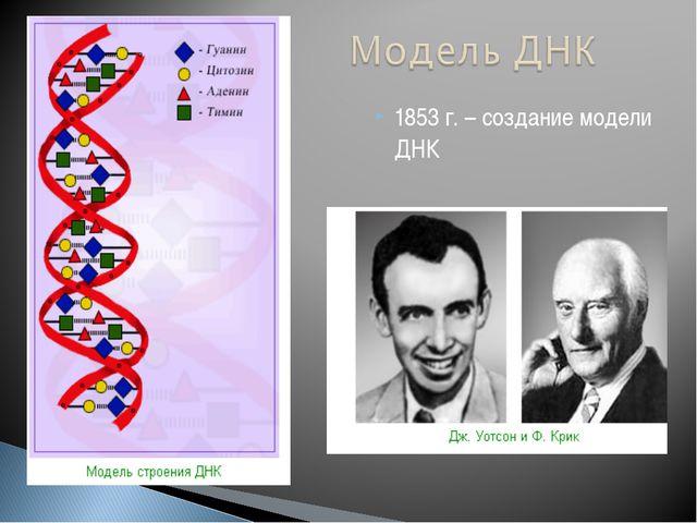 1853 г. – создание модели ДНК