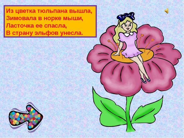 Из цветка тюльпана вышла, Зимовала в норке мыши, Ласточка ее спасла, В страну...