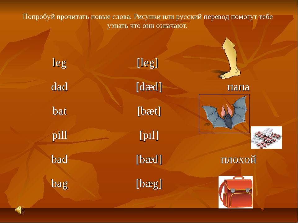Попробуй прочитать новые слова. Рисунки или русский перевод помогут тебе узна...