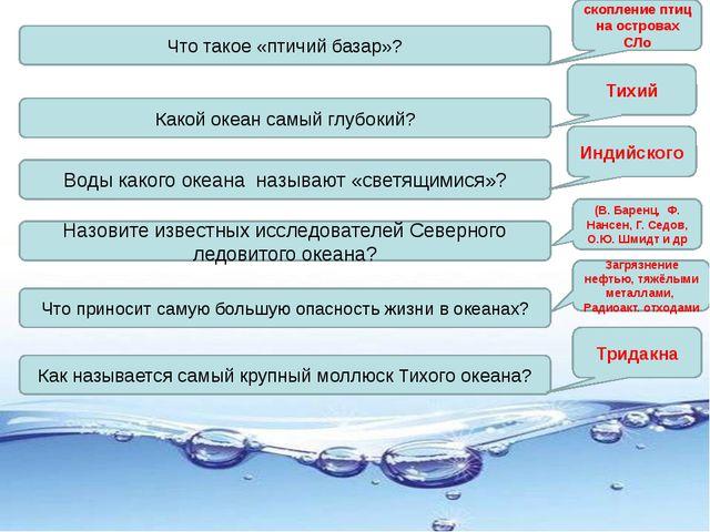 Что такое «птичий базар»? Какой океан самый глубокий? Воды какого океана назы...