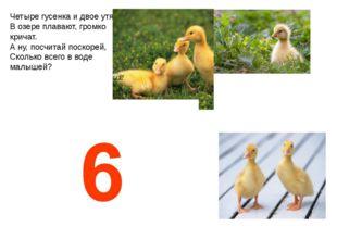 Четыре гусенка и двое утят В озере плавают, громко кричат. А ну, посчитай пос