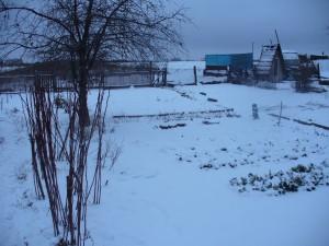 C:\Users\43\Desktop\Семьи\Маснавиевы\Огород-Зимой.-Огород-на-зиму-300x225.jpg