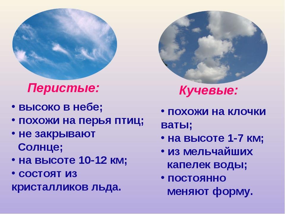высоко в небе; похожи на перья птиц; не закрывают Солнце; на высоте 10-12 км...