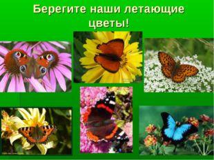 Берегите наши летающие цветы!