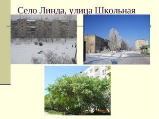 Село Линда, улица Школьная