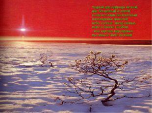 Чудный дар природы вечной, дар бесценный и святой, в нем источник бесконечный