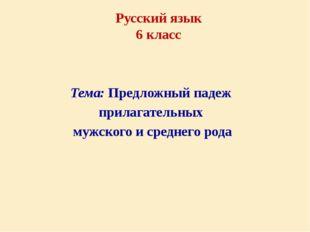 Тема: Предложный падеж прилагательных мужского и среднего рода Русский язык