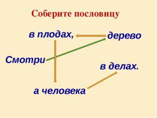 дерево Смотри в плодах, а человека Соберите пословицу в делах.
