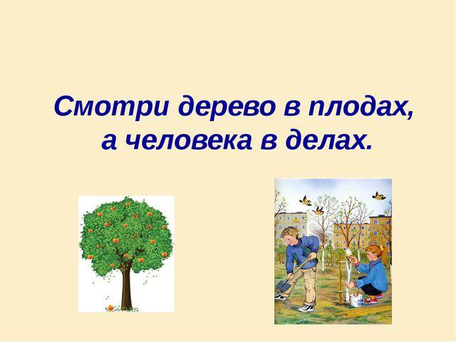 Смотри дерево в плодах, а человека в делах.