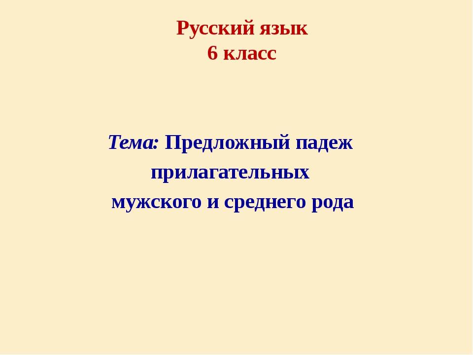 Тема: Предложный падеж прилагательных мужского и среднего рода Русский язык...
