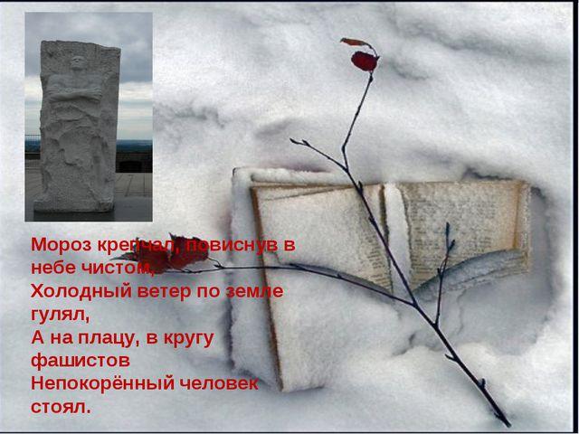 Мороз крепчал, повиснув в небе чистом, Холодный ветер по земле гулял, А на пл...