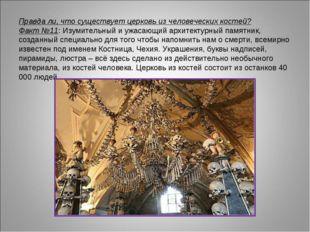 Правда ли, что существует церковь из человеческих костей? Факт №11: Изумитель