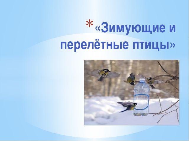 «Зимующие и перелётные птицы»