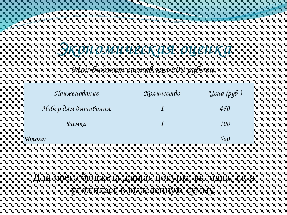 Экономическая оценка Мой бюджет составлял 600 рублей. Для моего бюджета данна...