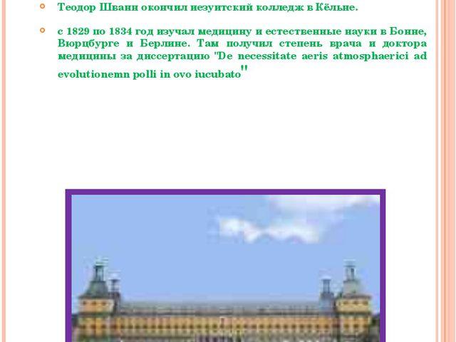 Годы учебы Теодор Шванн окончил иезуитский колледж в Кёльне. с 1829 по 1834 г...