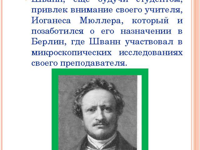 В 1834 году Т. Шванн назначен ассистентом при анатомическом музее в Берлине Ш...