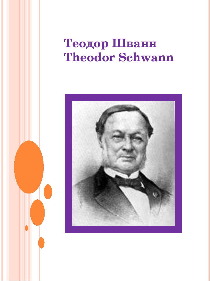 Теодор Шванн Theodor Schwann