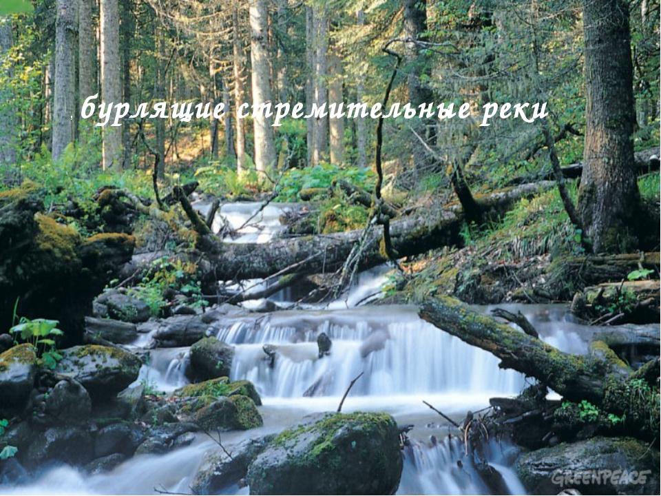 , бурлящие стремительные реки