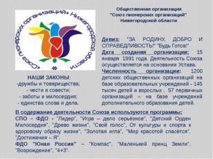 """Общественная организация """"Союз пионерских организаций"""" Нижегородской области"""