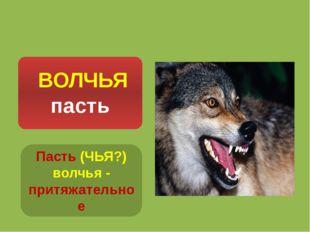 Пасть (ЧЬЯ?) волчья - притяжательное