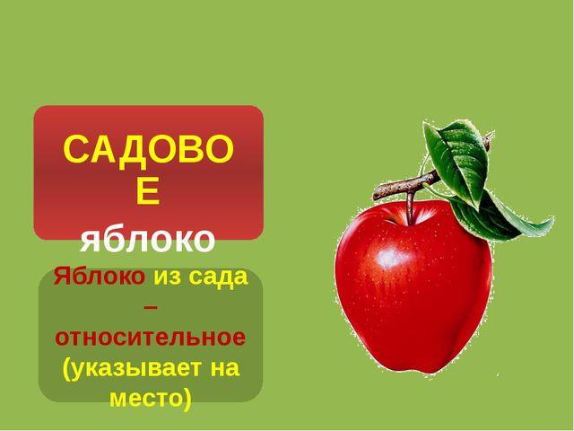 Яблоко из сада – относительное (указывает на место)