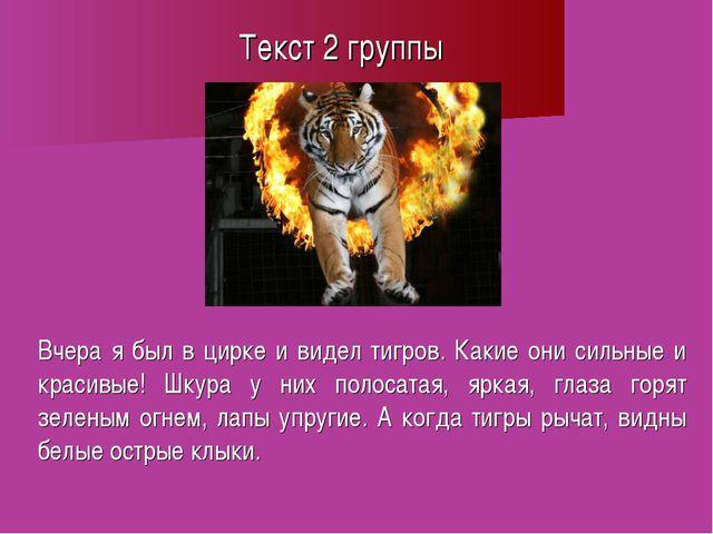 Текст 2 группы Вчера я был в цирке и видел тигров. Какие они сильные и красив...