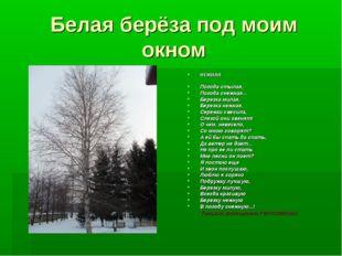 Белая берёза под моим окном НЕЖНАЯ Погода стылая, Погода снежная... Березка м