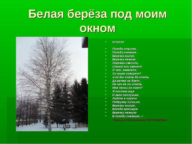 Белая берёза под моим окном НЕЖНАЯ Погода стылая, Погода снежная... Березка м...