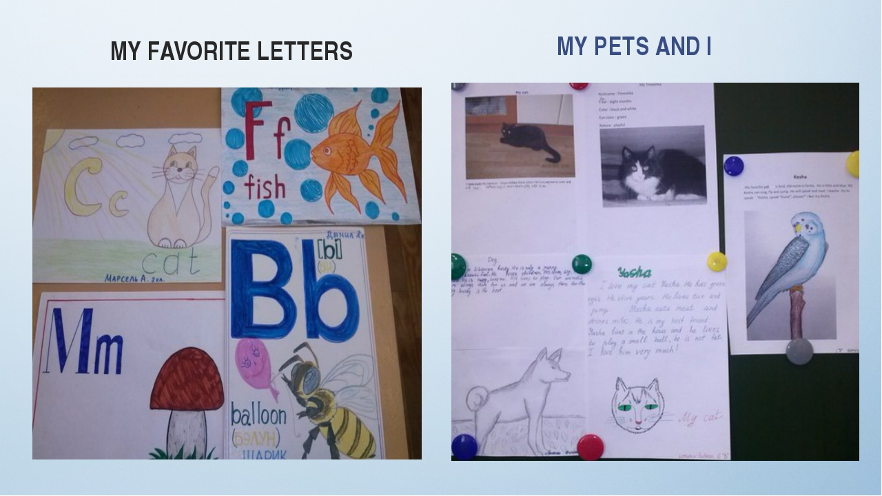 MY FAVORITE LETTERS MY PETS AND I