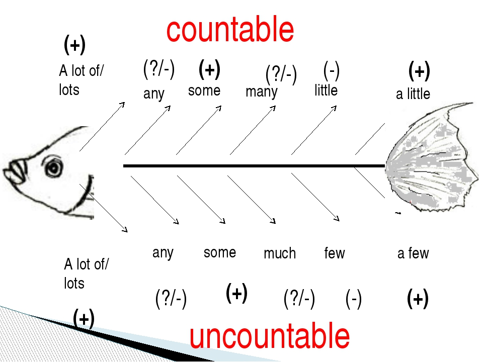 countable uncountable many little a little much few a few some some any any A...