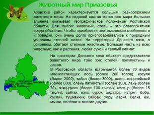 Животный мир Приазовья Азовский район характеризуется большим разнообразием ж