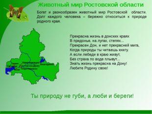 Животный мир Ростовской области Богат и разнообразен животный мир Ростовской