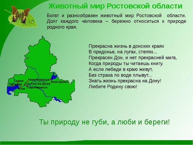 Животный мир Ростовской области Богат и разнообразен животный мир Ростовской...