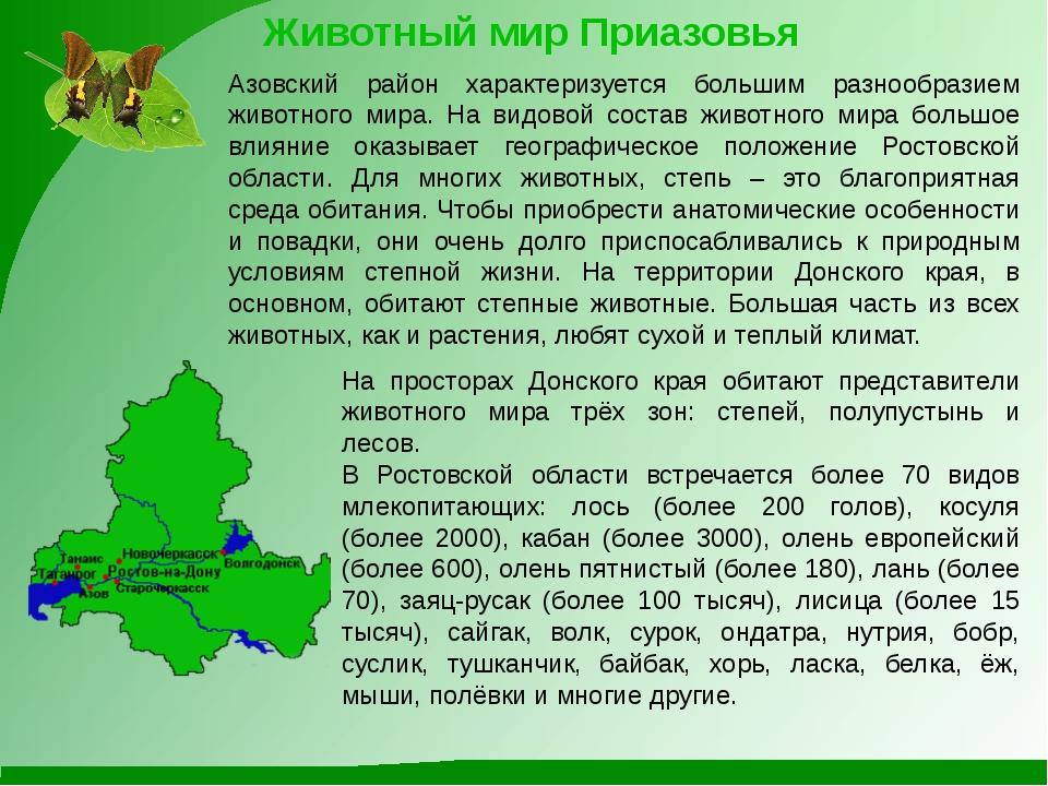Животный мир Приазовья Азовский район характеризуется большим разнообразием ж...