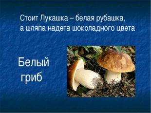 Стоит Лукашка – белая рубашка, а шляпа надета шоколадного цвета Белый гриб