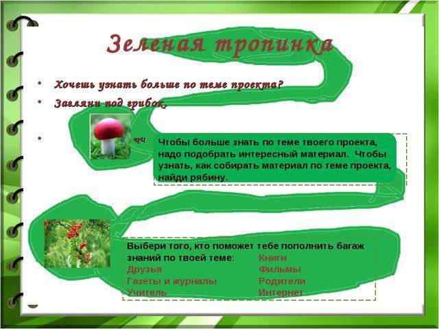 Хочешь узнать больше по теме проекта? Загляни под грибок. ЧЧ Зеленая тропинка...