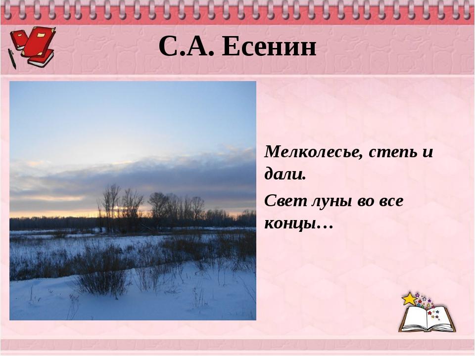 С.А. Есенин Мелколесье, степь и дали. Свет луны во все концы…
